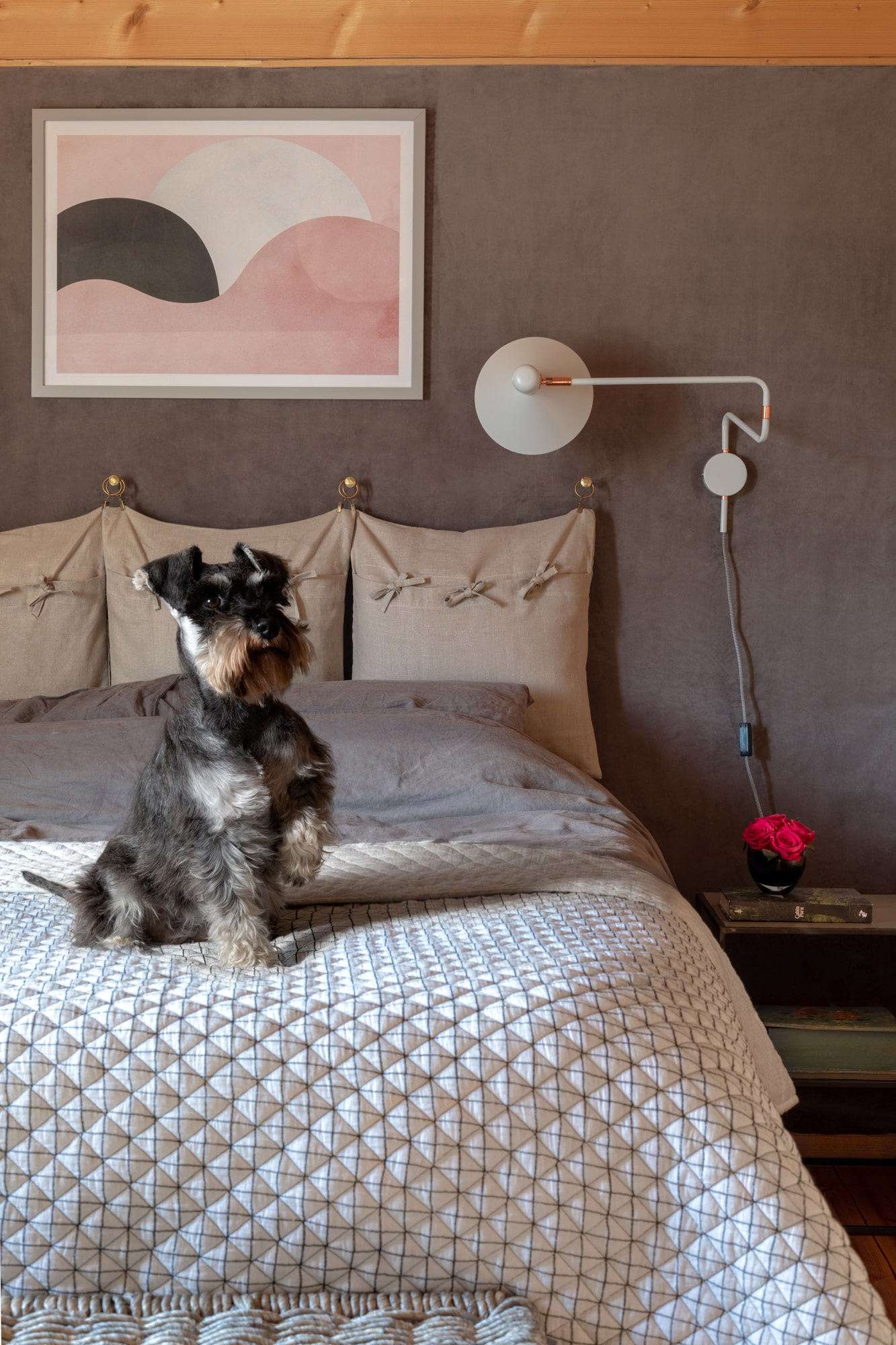 Interior design photo of a bedroom with a dog sitting on the bed